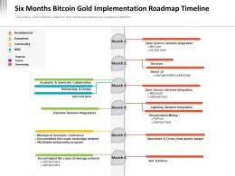Six Months Bitcoin Gold Implementation Roadmap Timeline