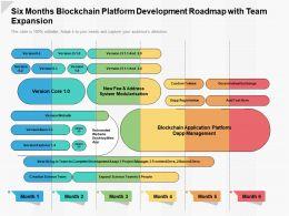 Six Months Blockchain Platform Development Roadmap With Team Expansion