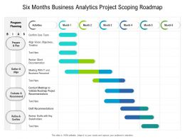 Six Months Business Analytics Project Scoping Roadmap