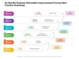 Six Months Business Information Improvement Process Best Practice Roadmap