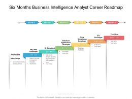 Six Months Business Intelligence Analyst Career Roadmap