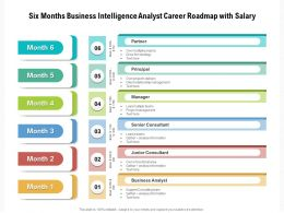 Six Months Business Intelligence Analyst Career Roadmap With Salary