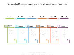 Six Months Business Intelligence Employee Career Roadmap