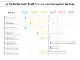 Six Months Community Health Assessment And Improvement Roadmap