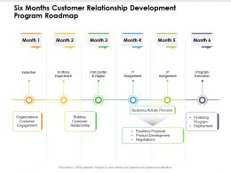 Six Months Customer Relationship Development Program Roadmap