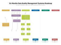Six Months Data Quality Management Systems Roadmap