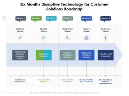 Six Months Disruptive Technology For Customer Solutions Roadmap