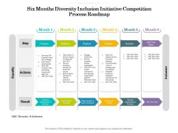 Six Months Diversity Inclusion Initiative Competition Process Roadmap