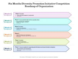 Six Months Diversity Promotion Initiative Competition Roadmap Of Organization