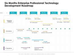 Six Months Enterprise Professional Technology Development Roadmap