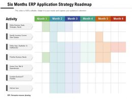 Six Months ERP Application Strategy Roadmap