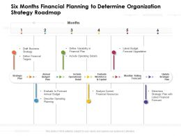 Six Months Financial Planning To Determine Organization Strategy Roadmap