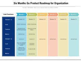 Six Months Go Product Roadmap For Organization