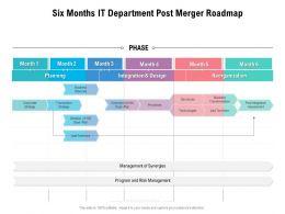 Six Months IT Department Post Merger Roadmap