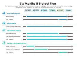 Six Months It Project Plan