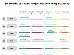 Six Months It Teams Project Responsibility Roadmap