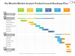 Six Months Market Analyst Product Launch Roadmap Plan
