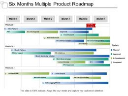 Six Months Multiple Product Roadmap