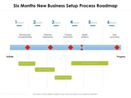Six Months New Business Setup Process Roadmap