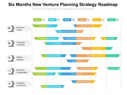 Six Months New Venture Planning Strategy Roadmap