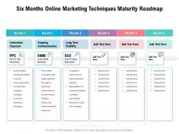 Six Months Online Marketing Techniques Maturity Roadmap