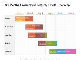 Six Months Organization Maturity Levels Roadmap