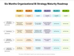 Six Months Organizational Bi Strategy Maturity Roadmap