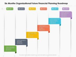 Six Months Organizational Future Financial Planning Roadmap