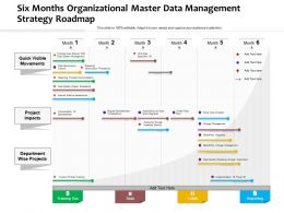 Six Months Organizational Master Data Management Strategy Roadmap