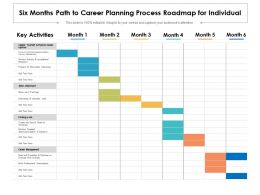 Six Months Path To Career Planning Process Roadmap For Individual