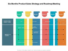 Six Months Product Sales Strategy And Roadmap Meeting