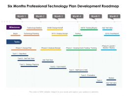 Six Months Professional Technology Plan Development Roadmap