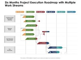 Six Months Project Execution Roadmap With Multiple Work Streams