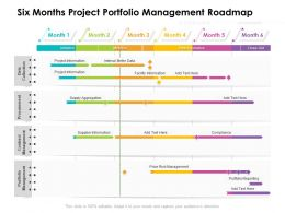Six Months Project Portfolio Management Roadmap