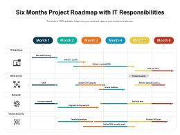 Six Months Project Roadmap With IT Responsibilities