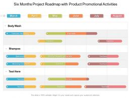 Six Months Project Roadmap With Product Promotional Activities