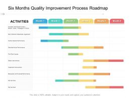 Six Months Quality Improvement Process Roadmap