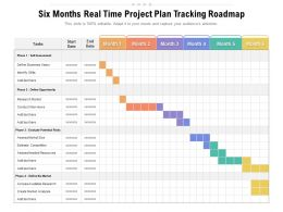 Six Months Real Time Project Plan Tracking Roadmap