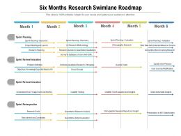 Six Months Research Swimlane Roadmap