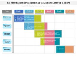 Six Months Resilience Roadmap To Stabilize Essential Sectors