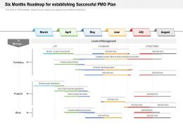 Six Months Roadmap For Establishing Successful PMO Plan