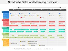 Six Months Sales And Marketing Business Development Timeline