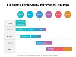 Six Months Sigma Quality Improvement Roadmap