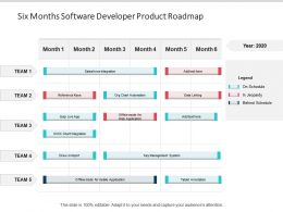 Six Months Software Developer Product Roadmap