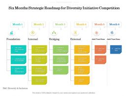 Six Months Strategic Roadmap For Diversity Initiative Competition