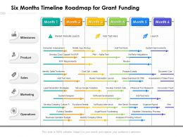 Six Months Timeline Roadmap For Grant Funding