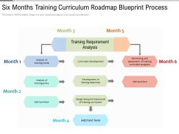 Six Months Training Curriculum Roadmap Blueprint Process