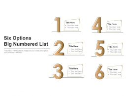 Six Options Big Numbered List