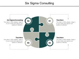 Six Sigma Consulting Ppt Powerpoint Presentation Pictures Background Designs Cpb