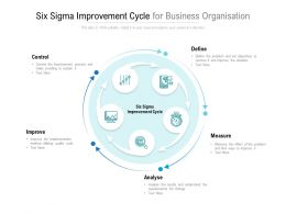 Six Sigma Improvement Cycle For Business Organisation